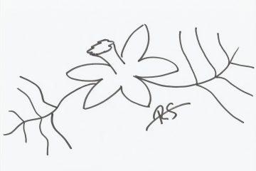 Zeichnung von Regina Svhrott - Narzmichnicht