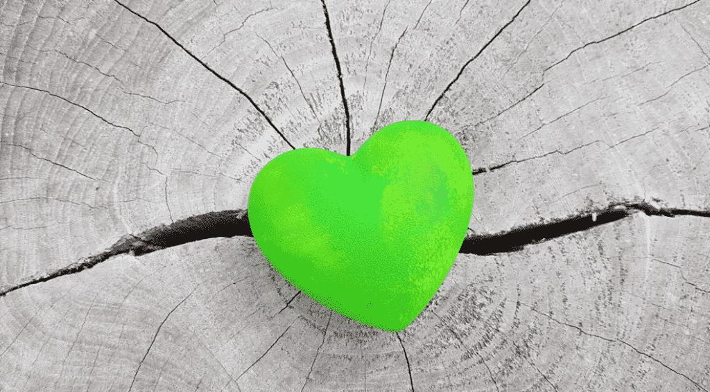 grünes Herz statt grauem Stein